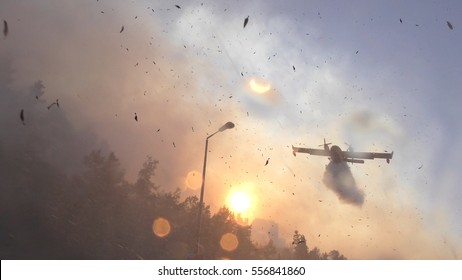 Amphibian airplane drops fire retardant and sea water on a forest fire