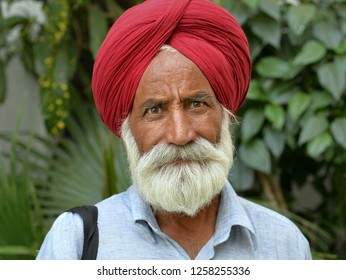 AMRITSAR, PUNJAB / INDIA - OCT 23, 2018: Elderly Indian Sikh man with trimmed beard and red turban (dastar) poses for the camera, on Oct 23, 2018.