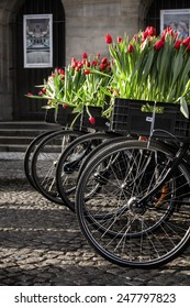 Amsterdam bicycles with red tulips