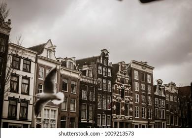 amsterdam city holland