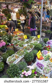 Amsterdam, Netherlands, 10 may 2015: tourists look at merchandise on amsterdam flower market in the netherlands