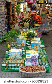 AMSTERDAM, NETHERLANDS - JULY 3, 2016: Flower Market - the only floating flower market in the world, and one of the most fragrant places of interest of Amsterdam.