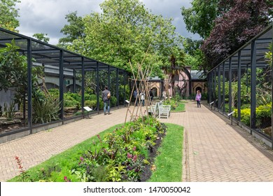 Amsterdam, The Netherlands - June 08, 2019: Visitors in Artis Zoo Amsterdam looking to the bird sanctuary