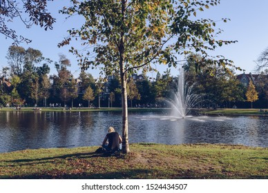 Amsterdam, The Netherlands, October 11, 2018: young woman is reading a book near lake in Vondelpark