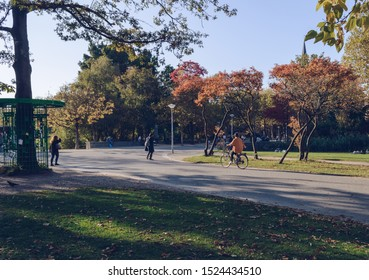 Amsterdam, The Netherlands, October 11, 2018: woman riding a bicycle on sunny evening at Vondelpark