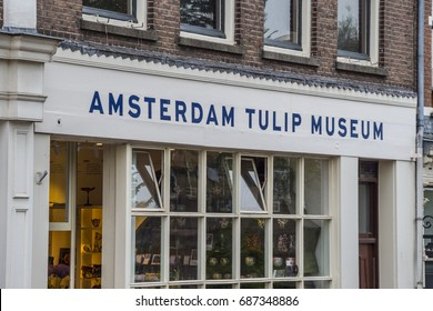 Amsterdam Tulip Museum in the city center - AMSTERDAM / THE NETHERLANDS - JULY 20, 2017