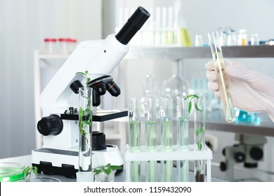 Analyst with test tubes doing chemical analysis in laboratory, closeup