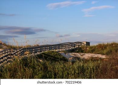 Anastasia State Park near the town of Saint Augustine, Florida.