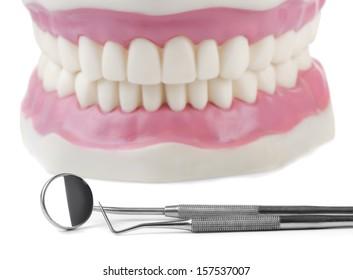Anatomical teeth model and dental tools