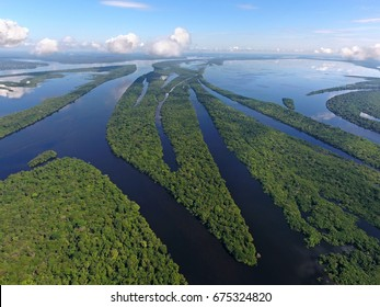Anavilhanas archipelago, flooded amazonia forest in Negro River, Amazonas, Brazil