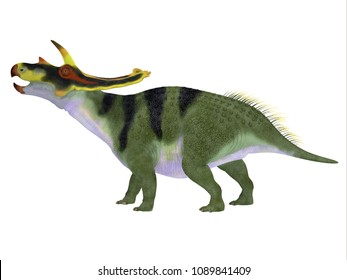 Anchiceratops Dinosaur Side Profile 3D illustration - Anchiceratops ornatus was a herbivorous Ceratopsian dinosaur that lived in Alberta, Canada in the Cretaceous Period.