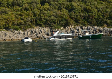 Anchored boats on a peaceful sea surface with a forest behind them
