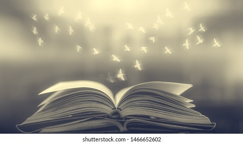An ancient book that opens on a wooden table with overlays of beautiful light and flying birds to study success destinations as a design background and as an illustration.
