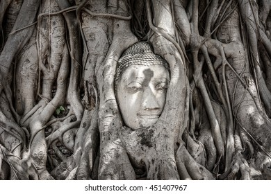 Ancient buddha head in Banyan tree root at Wat Mahatat, Ayuddhaya, Thailand