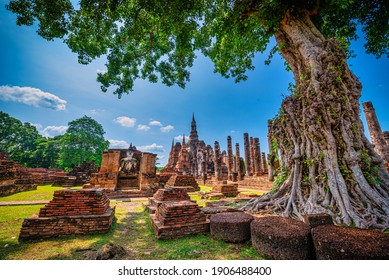 Ancient Buddha statue with tree at Wat Mahathat temple in Sukhothai Historical Park, Thailand.