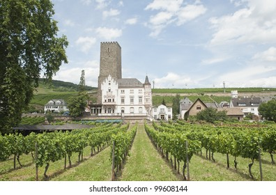 ancient building through the vineyard of the  Rhine town in Rudesheim.
