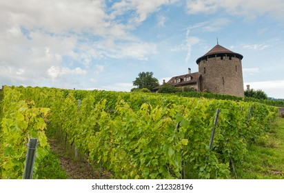 Ancient castle placed on Lavaux vineyards, Switzerland