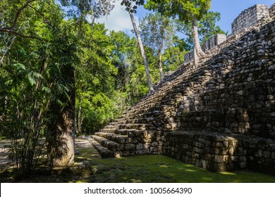 Ancient city of the Mayans - Calakmul. Biosphere Reserve in Mexico. Calakmul mayan ruins in State of Campeche