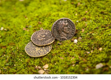 Ancient coins on the grass