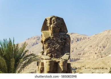 Ancient Colossi of  Memnon against mountains and blue sky background in Luxor, Egypt. Many doves sitting on statue on shadow side. Horizontal color photo.