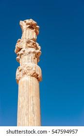 The ancient columns in Ancient city - Persepolis,Shiraz-Iran.