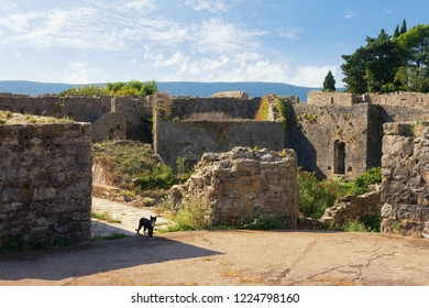Ancient destroyed fortifications. View of Spanjola Fortress  ( Spanish fortress ) in Herceg Novi city, Montenegro
