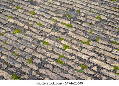 ancient detailed pavement background from Berlin
