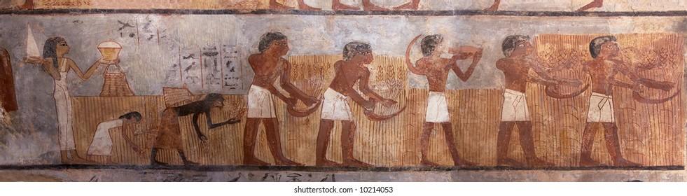Ancient Egyptian Mural of Grain Harvest