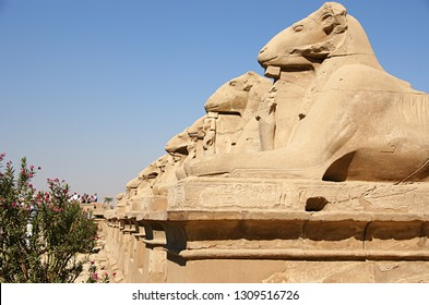 Ancient Egyptian ram statues in Giza
