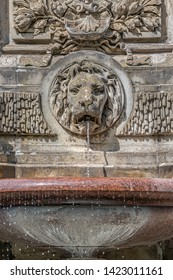 Ancient fountain with a lion head and cold clean water, Magdeburg, Germany, details, closeup