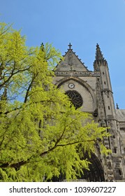 The ancient Gothic church is surrounded with the blooming trees in the historic part of the Bordeaux city.