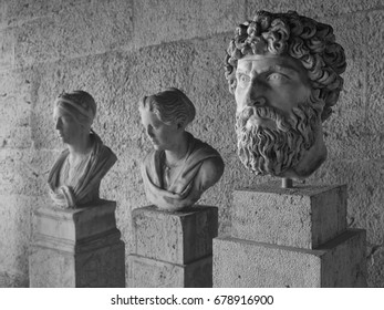 Ancient heads/Heads