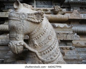 Ancient Horse Sculpture in Sarangapani Temple