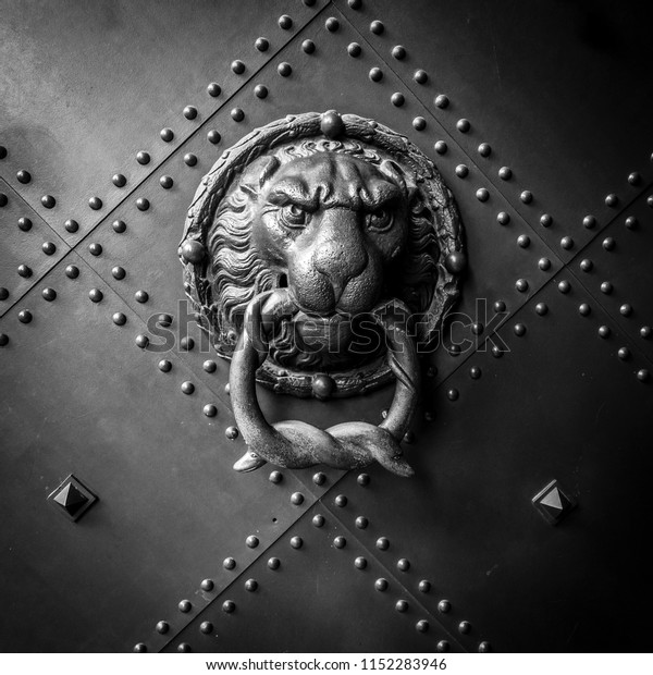 Ancient metal lion head door knocker
