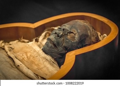 Ancient mummy in the sarcophagus, close-up