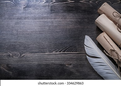 Ancient paper scrolls feather on wooden board copyspace.
