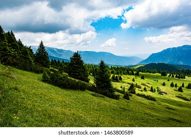 ancient pastures with heavy memories in Asiago Cima Manderiolo
