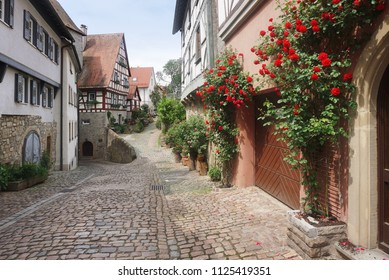 An ancient pedestrian street with half-timbered houses and growing red roses in perspective. Bad Wimpfen, Baden-Wurttemberg, Germany.