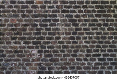 Ancient  red brick wall mixed with sea shell