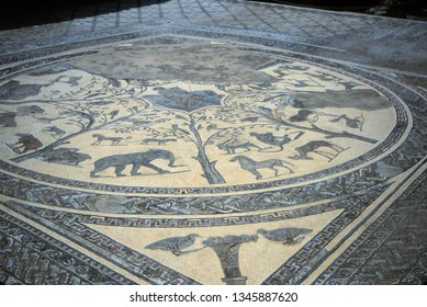 Ancient Roman  mosaic floor  in the abandoned city of Volubilis, Morocco