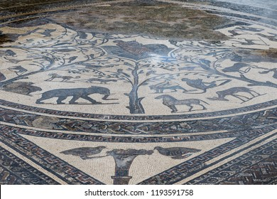 Ancient roman ruins of Volubilis in Morocco with mosaics