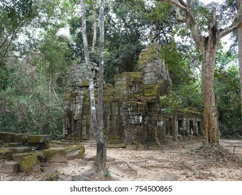 Ancient ruin at Ta Prohm Temple in Siem Reap, Cambodia