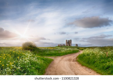 Ancient ruined church down a winding dirt track with sunset light shining across the wild flowers and plants