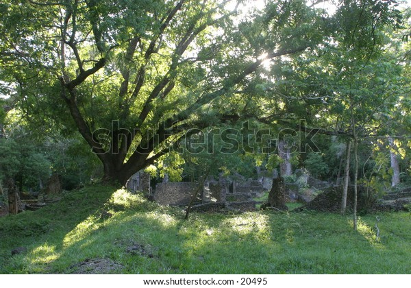 Ancient Ruins of Arab Town in Tropical Forest