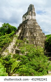 Ancient ruins of Tikal in Guatemala surrounded by forest