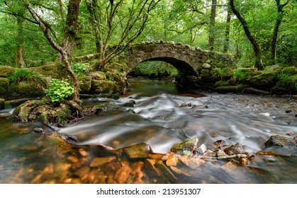 An ancient stone packhorse bridge crossing the River Bovey in Hisley Woods in east Dartmoor