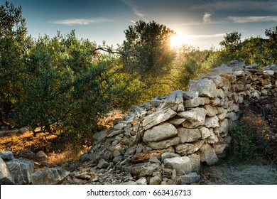 Ancient stone wall on  the Croatian Island Pasman, Europe