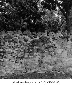 Ancient stone wall in woodland, taken in black and white.