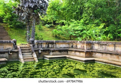 Ancient swimming pool with stair, bright green tropical foliage and blooming water in Anuradhapura, Sri Lanka. Water pond was assigned around the 9 century for Buddhist monks for their daily baths