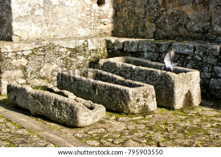 Ancient tombs in Santa Maria da Feira castle, Portugal